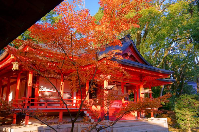 【令和に巡りたい!】東京の三大縁結び神社と周辺の恋愛パワースポットを一日にたくさん巡る2つのルート アイキャッチ