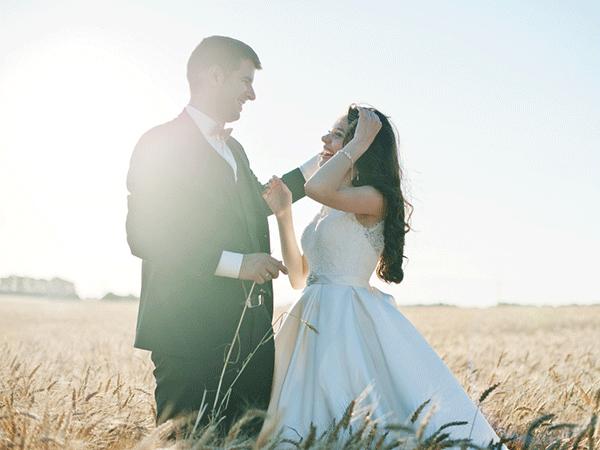 とら婚の基本情報