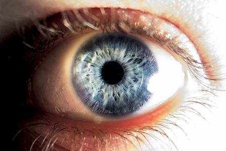 目の大きさ