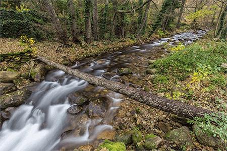 3. 川の水